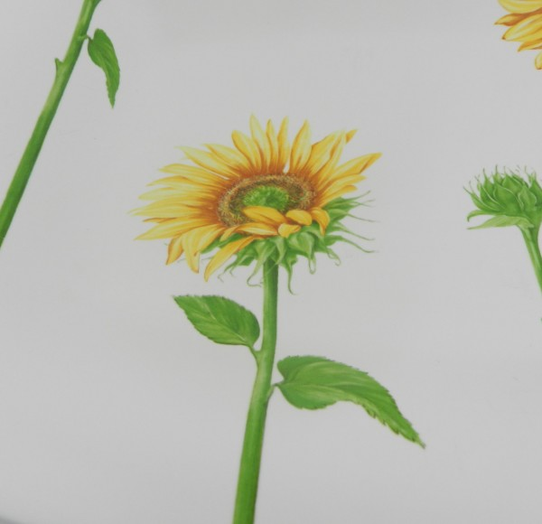 Duża patera Villeroy&Boch Flora Summerfield decor 2